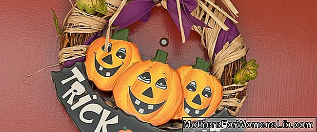 DIY Guirnaldas de Halloween: las ideas más bellas: ideas
