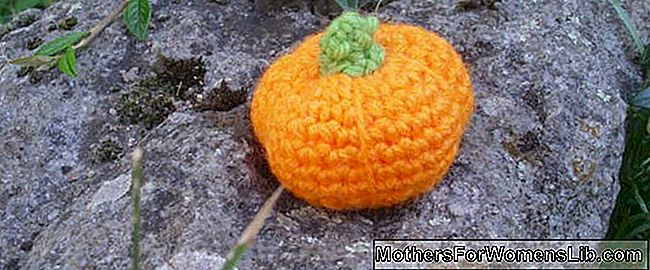 Citrouille d'Halloween à la technique amigurumi: halloween