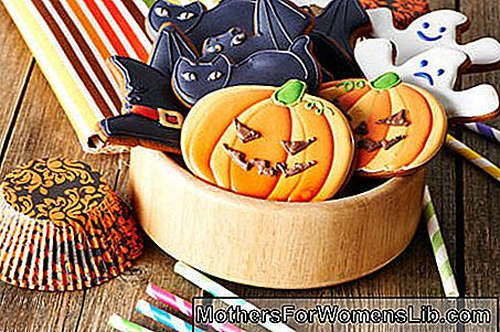 Ideas de decoración de Halloween | Decoraciones dulces | FOTOS