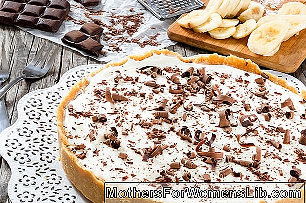 Cheesecake De Ricotta Y Chocolate