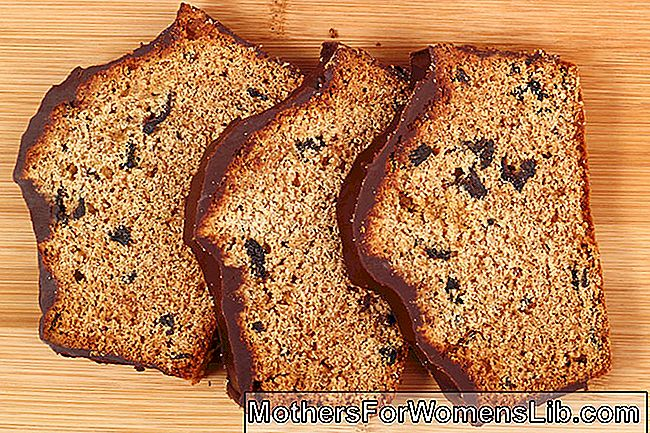 Plumcake con chips de chocolate