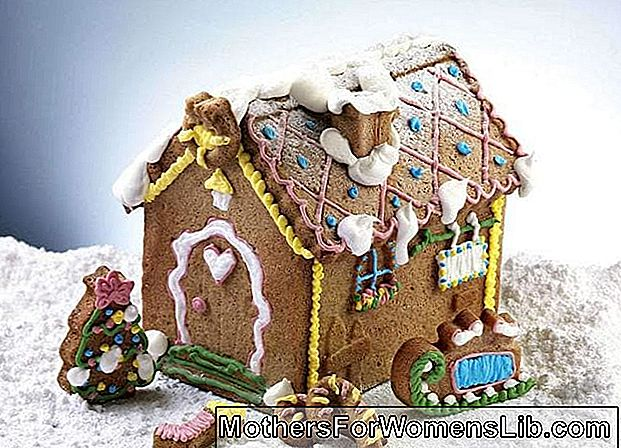 Mould for gingerbread house