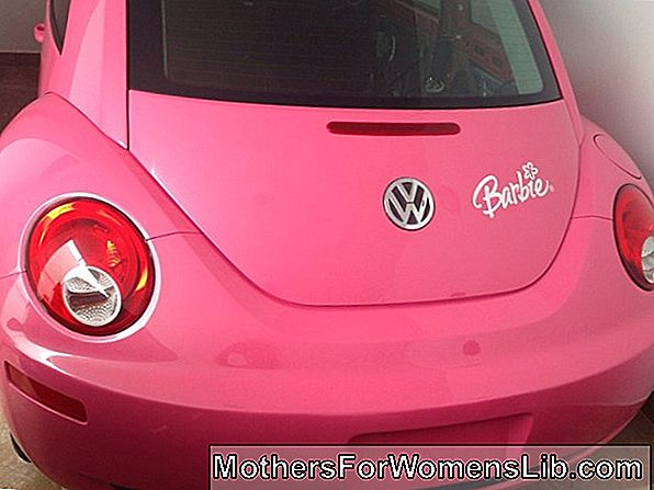 La beetle barbie