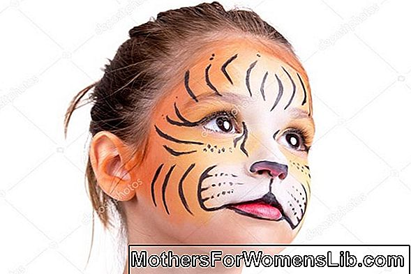 Make Up Carnival: maquillaje tigre