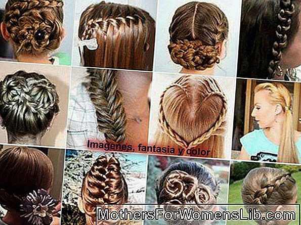 Las trenzas más bellas y originales: video tutoriales.