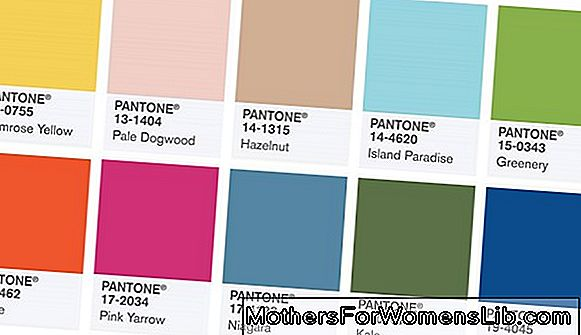 Todas las tendencias de color de Pantone Fall Winter 2019 (y cómo combinarlas)
