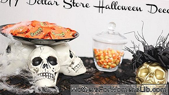 Decoraciones de halloween: ideas de bricolaje.