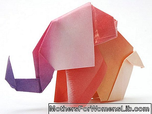 Origami, initiation à l'art du pliage de papier